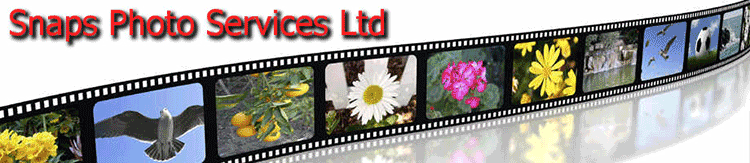 Mail a Big File to Snaps photo services ltd